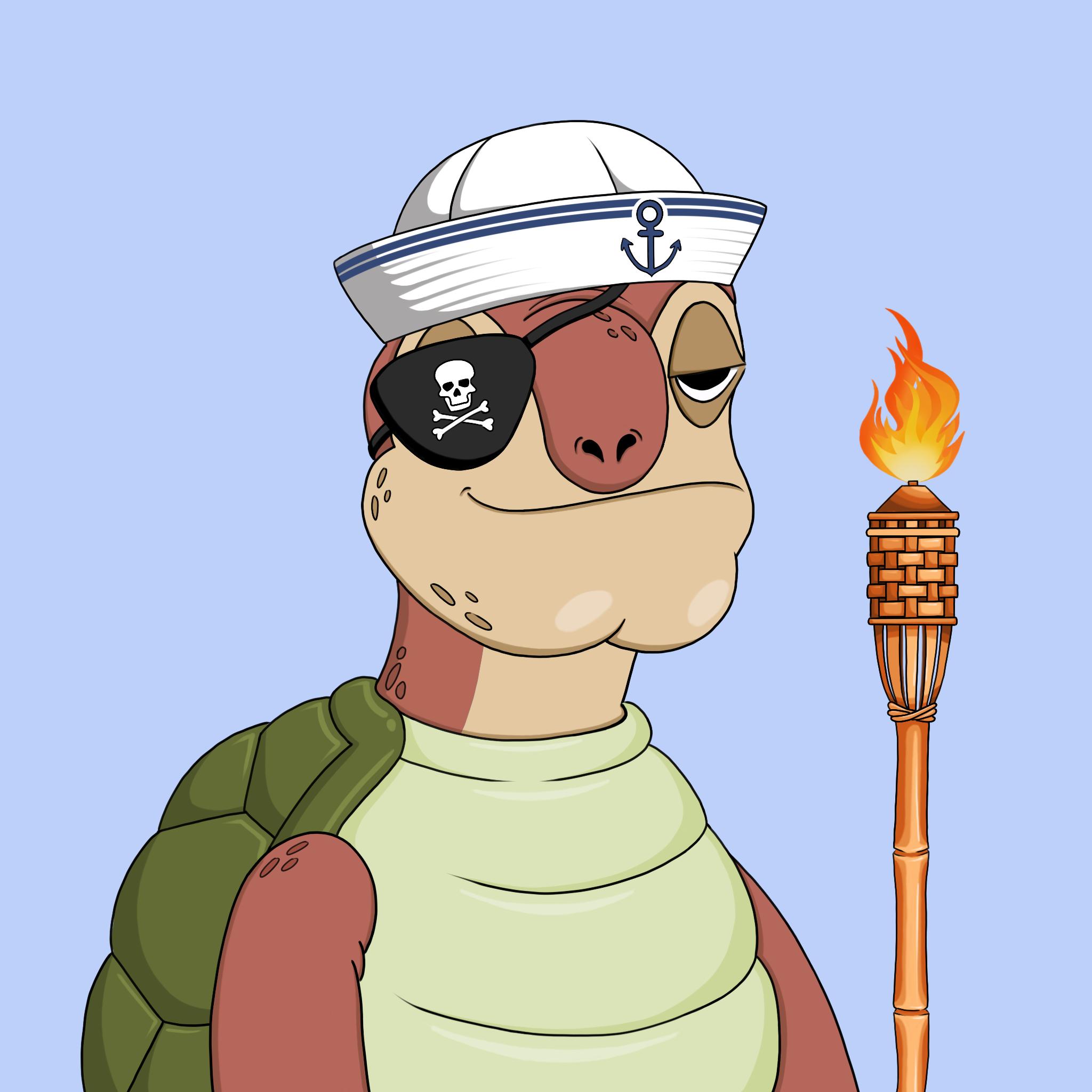 Toasy Turts #0350
